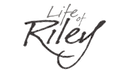 Life of Riley Leather Large Jewellerry Organiser