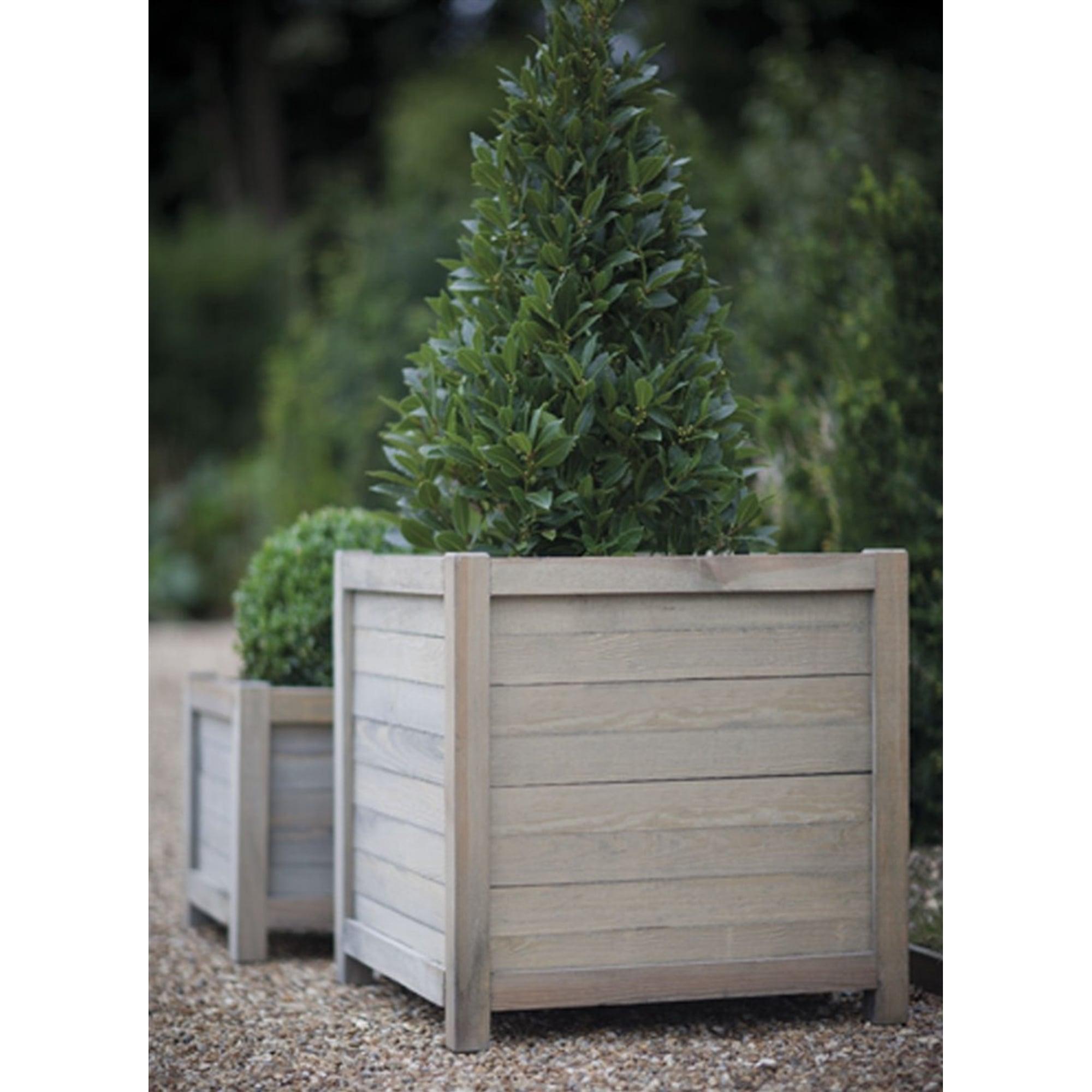 Spruce square planters large